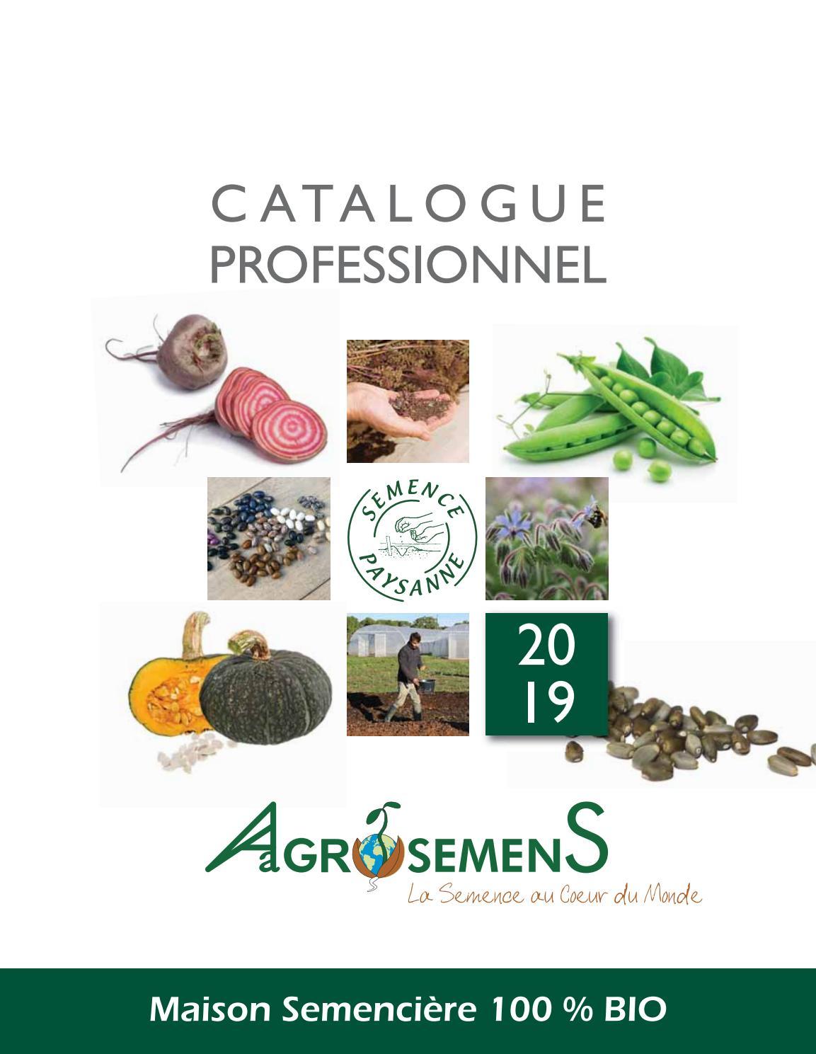 100g graines-paquet en vrac Légumes-Brocoli-début Violet Germination