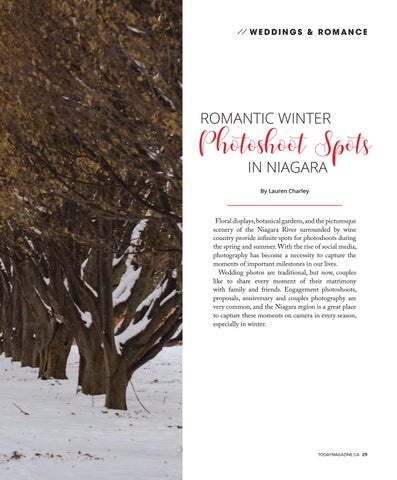 Page 29 of Romantic Winter Photoshoot Spots in Niagara