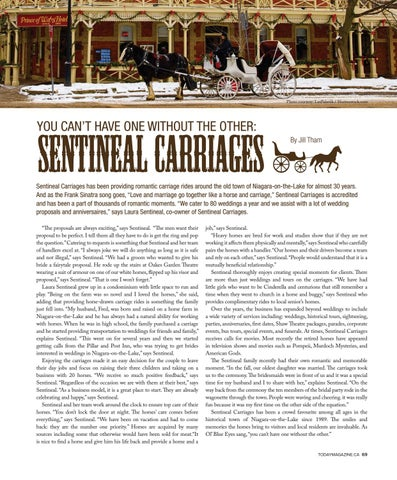Page 69 of Sentineal Carriages