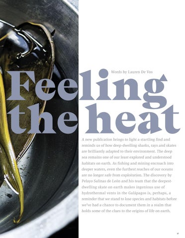 Page 69 of Feeling the heat