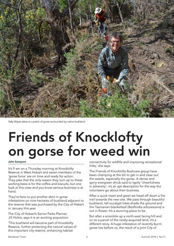 Page 6 of Friends of Knocklofty on gorse for weed win