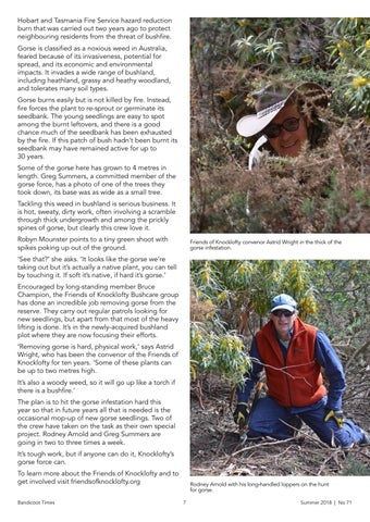 Page 7 of Friends of Knocklofty on gorse for weed win