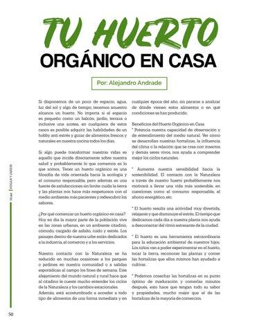 Page 50 of Tu huerto orgánico en casa, Por: Alejandro Andrade