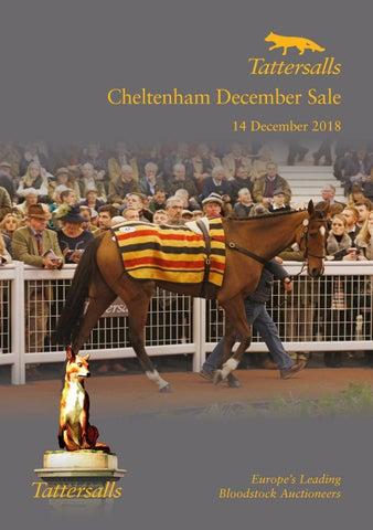 Tattersalls Cheltenham December Sale 2018 By Tattersalls