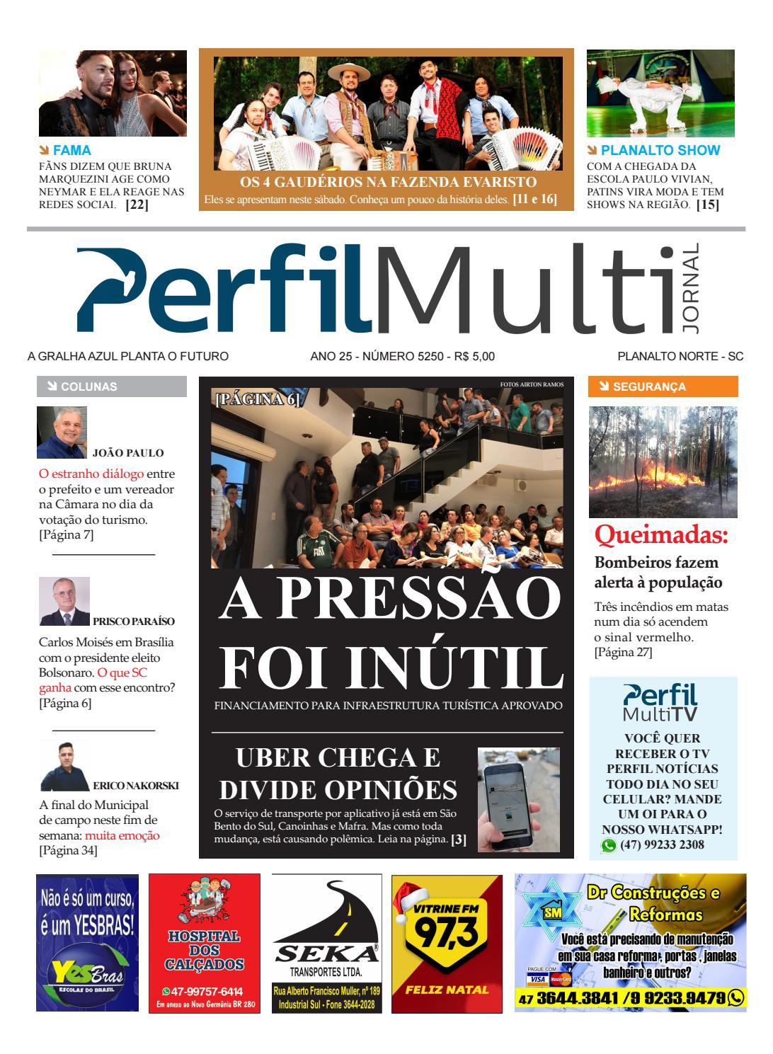 98382b4bc PERFIL MULTI by Jornal Perfil - issuu