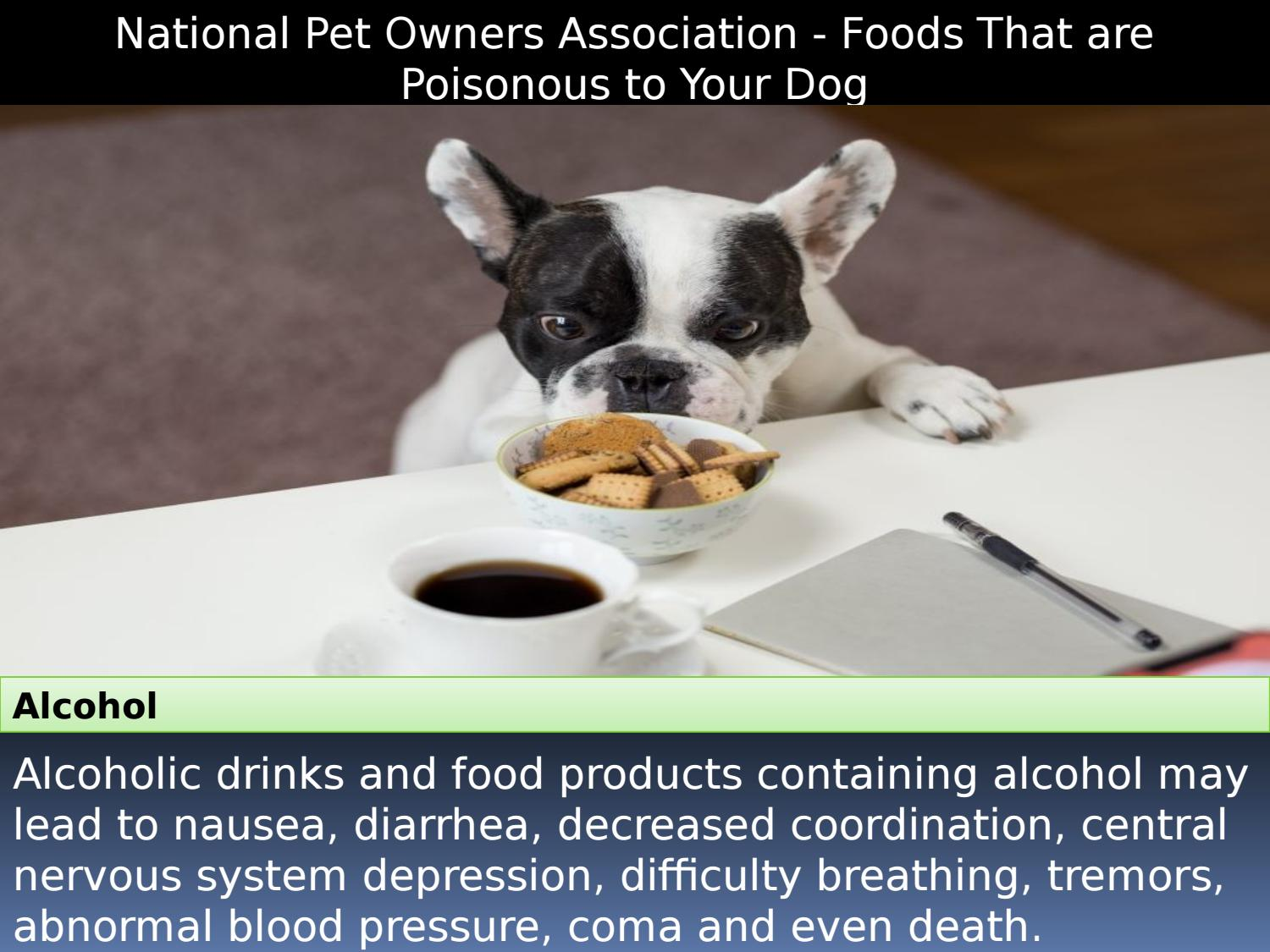 National Pet Owners Association - Foods That are Poisonous