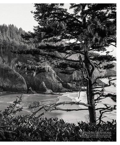 Page 5 of The Elegant Bridges of the Oregon Coast