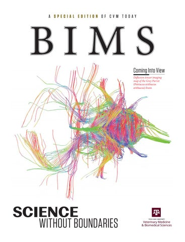 Bims A Special Edition Of Cvm Today By Texas A M College Of Veterinary Medicine Biomedical Sciences Issuu