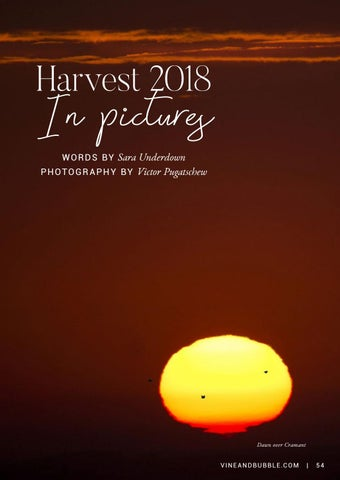 Page 55 of Harvest 2018 In Pictures