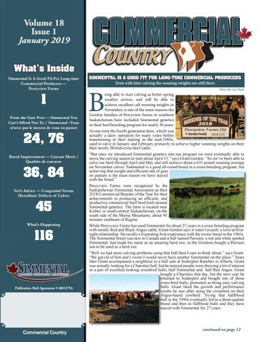 January Commercial Country by Today's Publishing Inc  - issuu