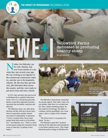 Page 12 of Ewe + I