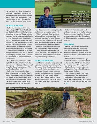 Page 13 of Ewe + I