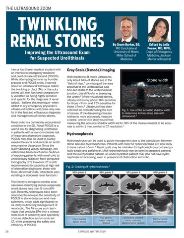 Page 28 of Twinkling Renal Stones: Improving the Ultrasound Exam  for Suspected Urolithiasis
