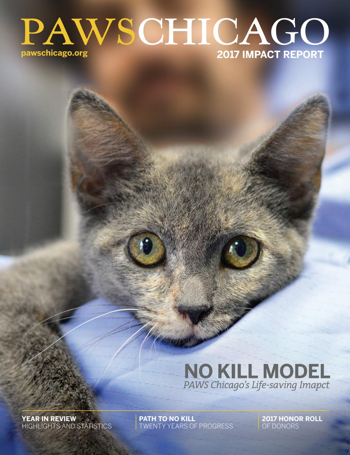 PAWS Chicago 2017 Impact Report by PAWS Chicago - issuu