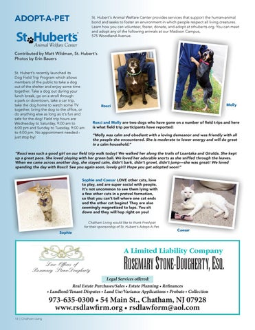 Page 18 of St. Hubert's Adopt-A-Pet