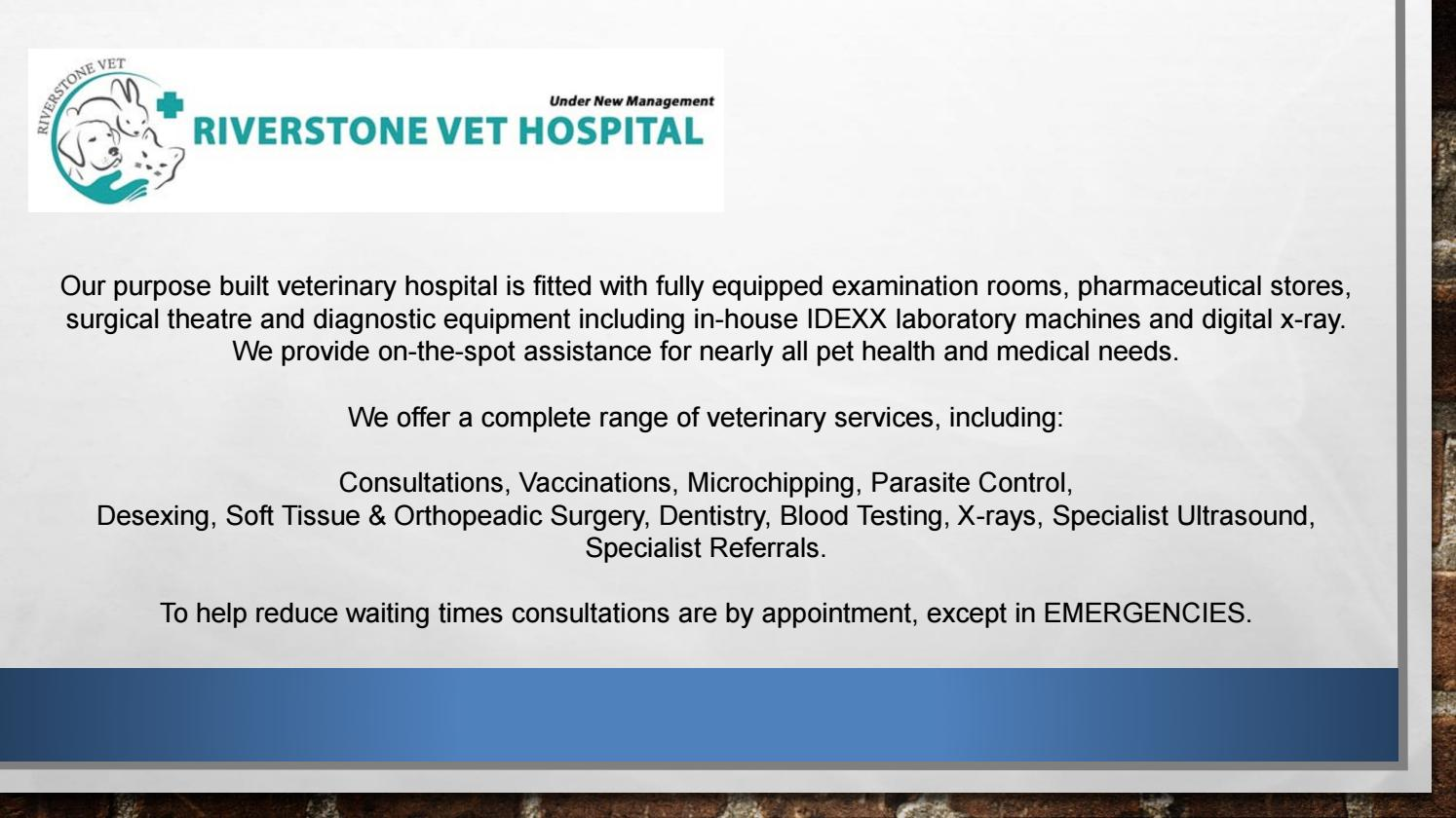 Vet Consultation - Riverstonevets by Riverstone Veterinary