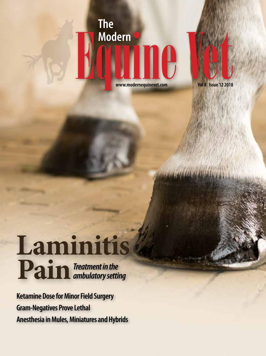 The Modern Equine Vet December 2018 by The Modern Equine Vet