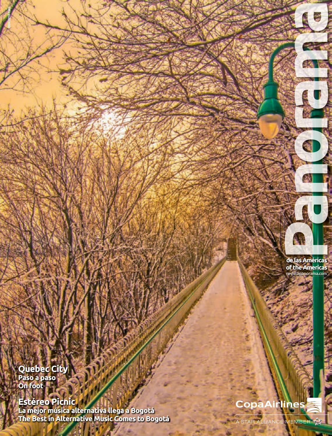 Revista Issuu Panorama Enero By 2019 Azurecom PuwiTZOXk