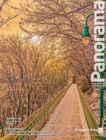REVISTA PANORAMA ENERO 2019 by azurecom - issuu 9785097dc8