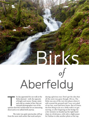 Page 4 of The Birks of Aberfeldy