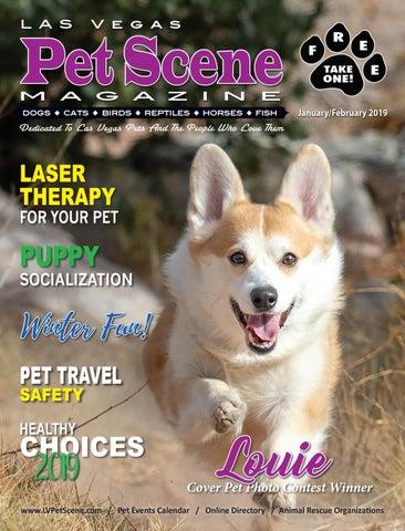 fabcc5ac1a34 Las Vegas Pet Scene Magazine, January/February 2019 by Homes ...