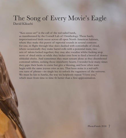 Page 15 of The Song of Every Movie's Eagle