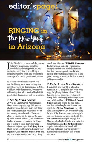 Page 16 of Ringing in the New Year in Arizona