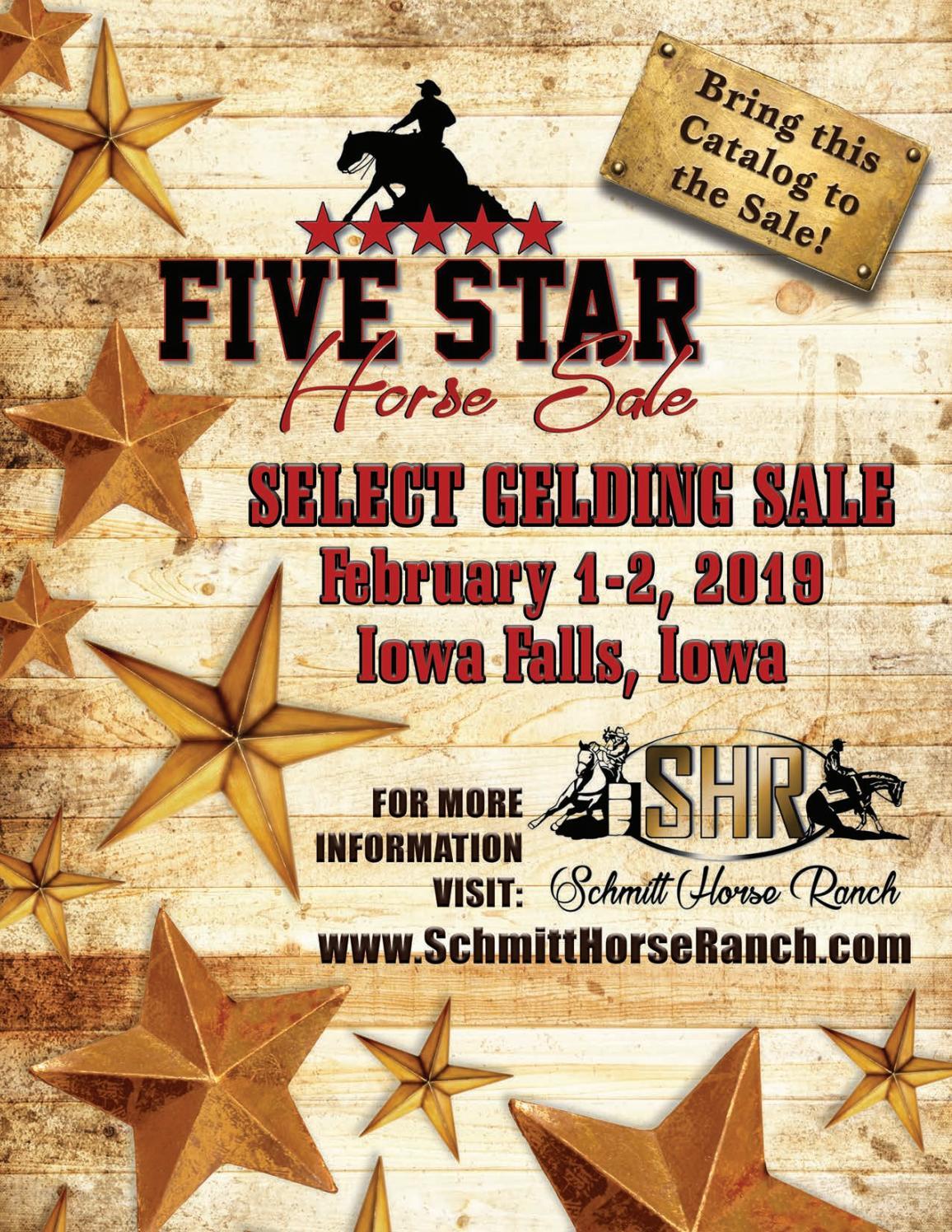 2019 Five Star Horse Sale Catalog