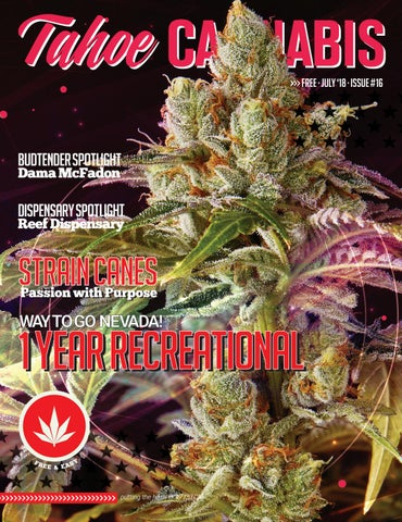 e09ebbd769020 Vegas Cannabis Magazine by Vegas Cannabis Magazine - issuu