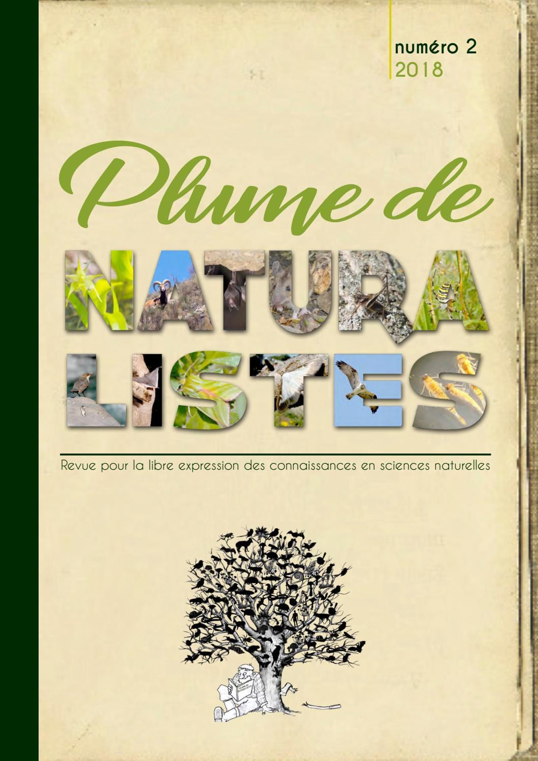 Plume De Naturalistes N2 2018 By Cpie Brenne Berry Issuu