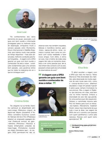 Page 9 of Aves e pessoas: a receita para uma viagem ornitológica inesquecível