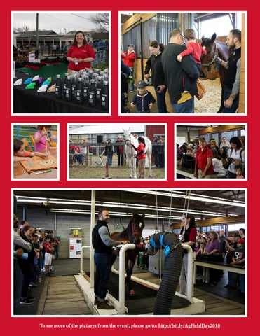 Page 17 of Rutgers Day 2018: From the Ag Field Day Horse Show to a High-Speed Treadmill Demonstration