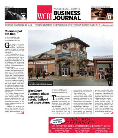 Westchester County Business Journal 122418 by Wag Magazine