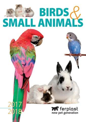Dimensioni Porte Interne Normativa.Birds Small Animals 2017 2018 By Geno Videv Issuu