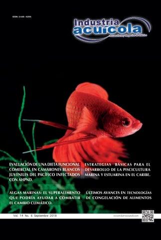 Edición 14.6 by Aqua Negocios SA de CV - issuu 5592ead47950