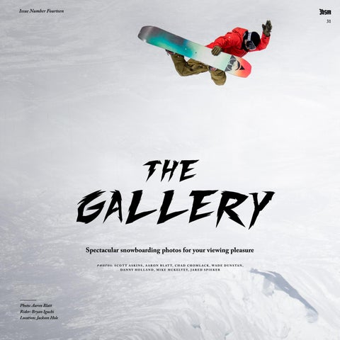 Page 31 of The Gallery