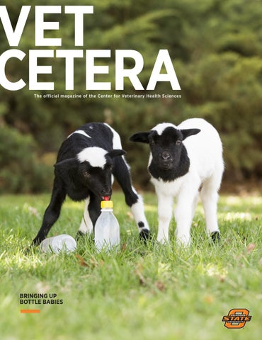 43585d5d07 OSU Vet cetera Winter 2018 by Oklahoma State - issuu