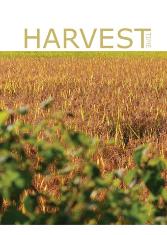 Page 6 of Harvest Time
