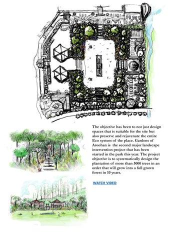 Page 11 of Newsletter/portfolio
