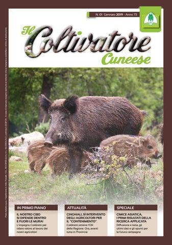 eb24447380f3 Coltivatore Cuneese n.01 Anno 2019. from Federazione Provinciale Coldiretti  Cuneo
