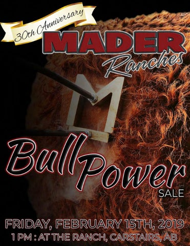 2019 Mader Ranches Bull Power Sale by Today's Publishing Inc  - issuu