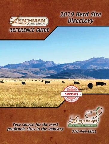 2019 Elite Herd Sire by Leachman - issuu