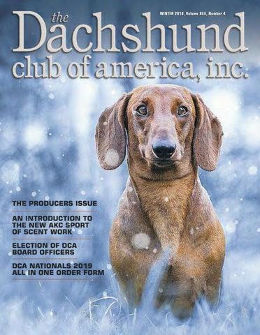 Dca Winter 2018 Newsletter By Lynne Dahlen Issuu