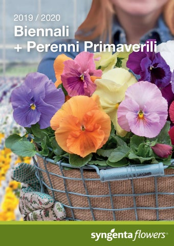Calendario Semine 2020.Biennials Spring Perennials 2019 2020 It By Syngenta