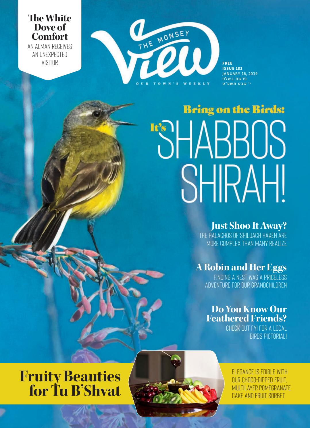 Issue 182 By The Monsey View Issuu