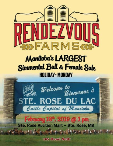 Rendezvous Farms 15th Annual Bull & Female Sale by Today's