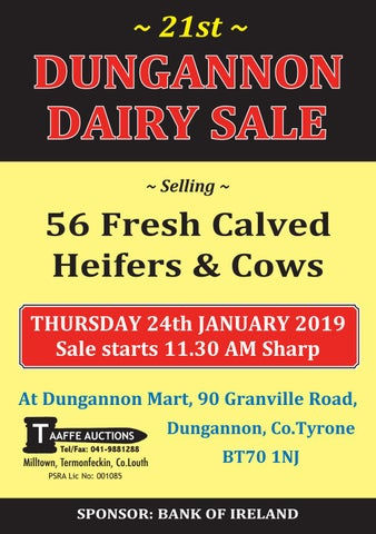 3dc33e6467 THE 21ST DUNGANNON DAIRY SALE by TAAFFE AUCTIONS - issuu