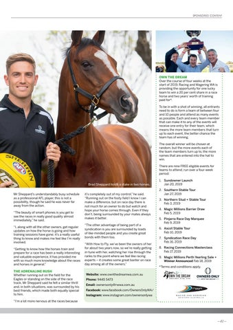 Page 41 of Galloping for Gold