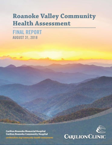 2018 Roanoke Valley Community Health Assessment Report by ...