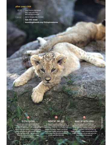 Page 15 of Have a Wild Time: Living Treasures Wild Animal Park